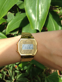 new-york-summers:  My Casio