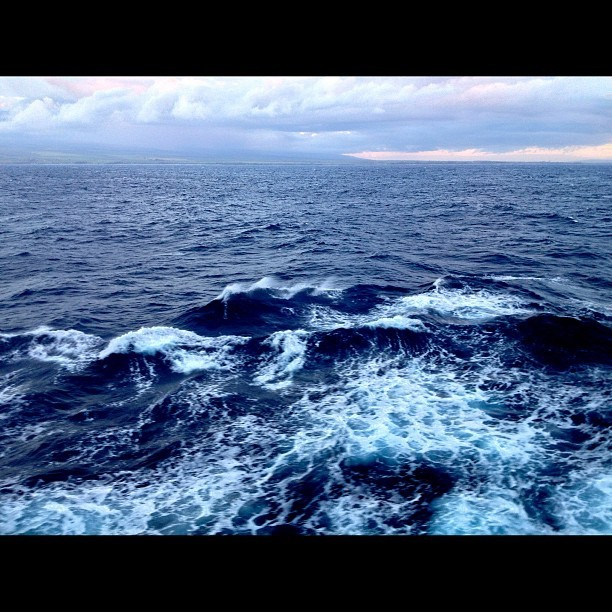 Five miles off the Maui coast.                                   #statigram #normal #nofilter #maui #is #a #iphoneonly #ocean #life #light #hawaii #mytravelgram