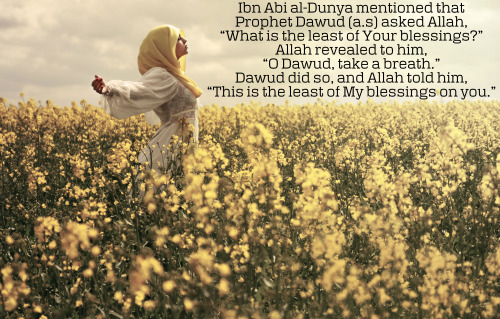 "Ibn Abi al-Dunya mentioned that Prophet Dawud (عليه السلام) asked Allah, ""What is the least of Your blessings?"" Allah revealed to him, ""O Dawud, take a breath."" Dawud did so, and Allah told him, ""This is the least of My blessings on you."" — [excerpt from Patience and Gratitude by Ibn Qayyim al-Jawziyyah, pg. 70]    Subhanallah..:)"