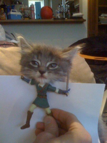 """It's dangerous to go alone! Take this."" Photo via Under The Paw"