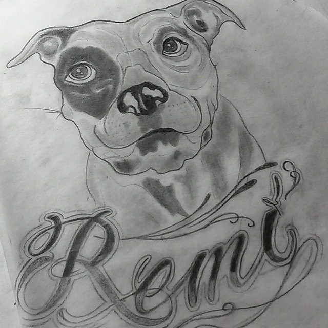 Sketch for a painting of my Dads Pitt, Remi! Miss this pooch. #tattooapprentice #tattoopeopletoronto #toronto #torontotattoo #pitbull #dogsofinstagram #instapitt #dogtattoo #scripttattoo #gangstascript #ismyfavourite #416 #wip #sketch