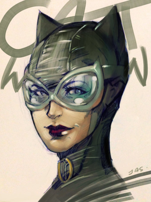 andresisbatman:  Catwoman by *jas-tham
