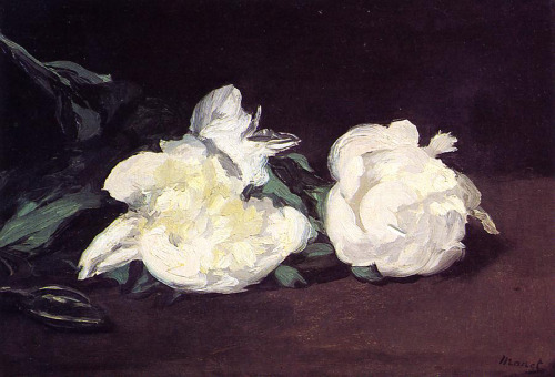 "a-l-ancien-regime:  Edouard Manet, ""Branch of White Peonies and Secateurs"", 1864, oil on canvas, 31 x 46.5 cm, Musée d'Orsay, Paris, France"