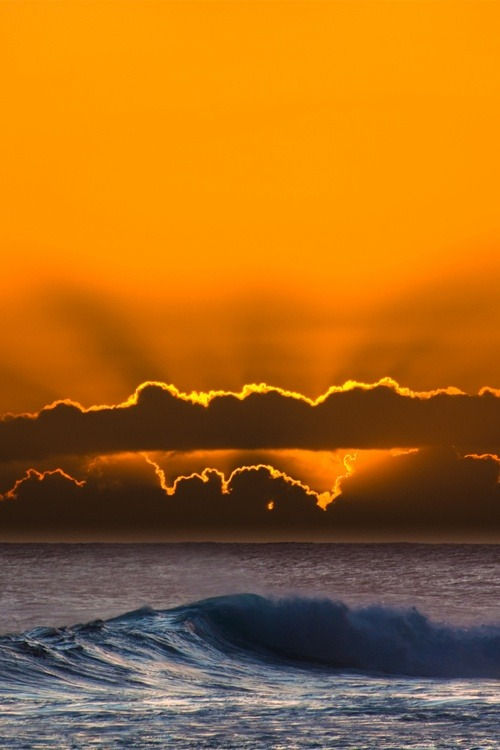 wolverxne:  Sunset wave by Bob Osbourne
