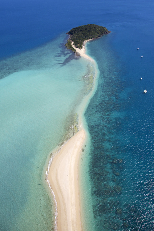 lushclub:  daysanddaze:  Langford Island, Whitsundays | Australia (by Tanya Puntti)  Imagine walking on the part where the sand gets submerged in the water a little bit