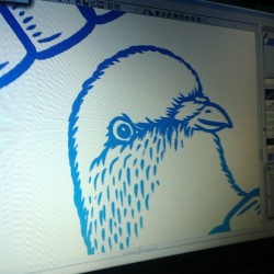 #wip #pigeon #drawing #illustration #sydfly