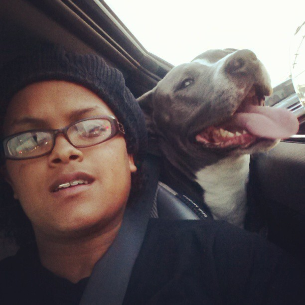 Cruising with my Pit in the streets of Los Angeles. I love my baby Champ. #TeamPitbulls #pitbullwithkids #pitbulllover #PitsAndChicks #PitbullLover  (at Dogs Playground.)