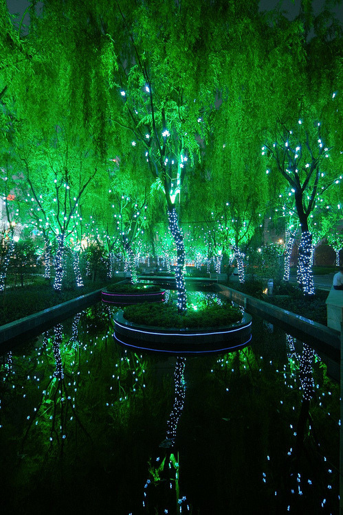 opticoverload:  Magic Forest in Shanghai   Awesome
