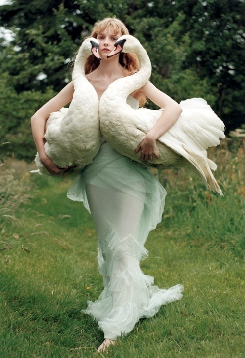 enchantingimagery:  A fairy-tale themed shot by fashion photographer Tim Walker.