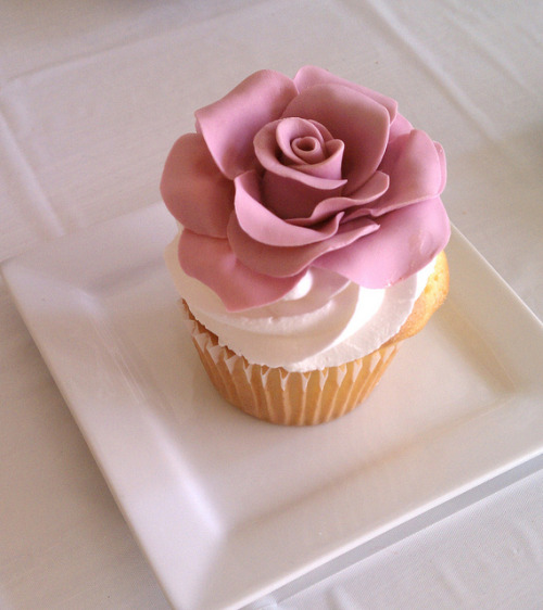awkwardcupcake:  IMAG1088 by Baby Cakes Specialty Cupcakes on Flickr.