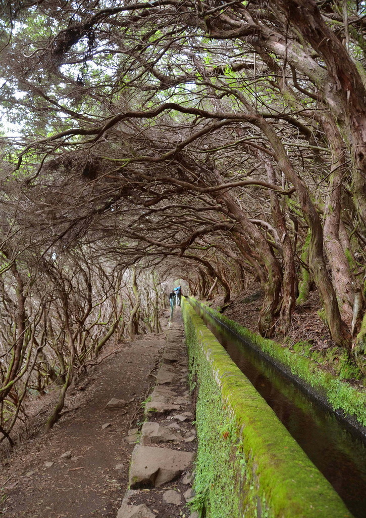 visitheworld:  Levada walk to 25 Fontes in Madeira Island, Portugal (by Pui-Leng).