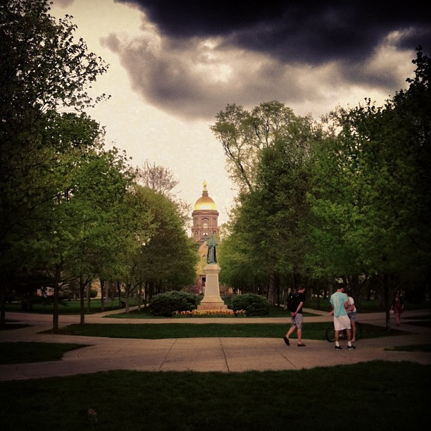 #goldendome #notredame #sky #trees #nature #quad #fightingirish #college #gold
