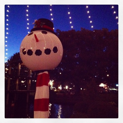 Merry Christmas. #merrychristmas #seaworld #snowman #lighting #sandiego