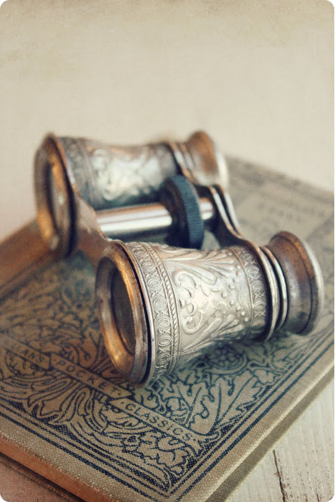 pixiedustparcels:  Vintage opera glasses on top of a vintage book.