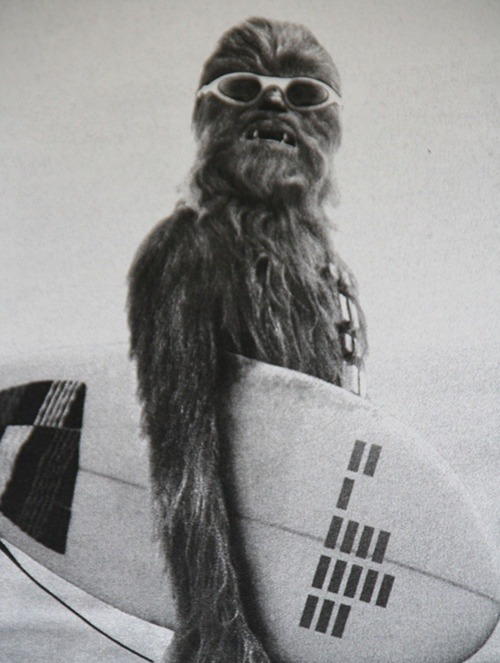 Chewbacca in the beach
