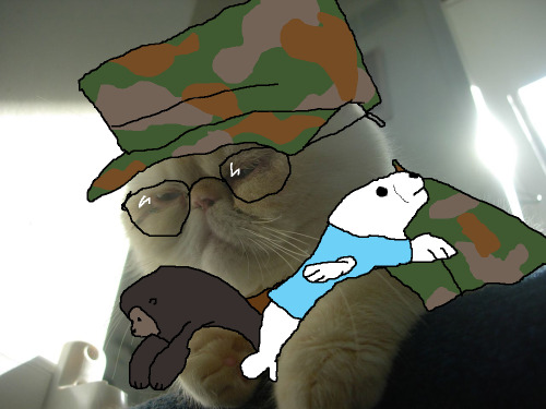 linusinhats:  These are my awards, Mother. From Army. The seal is for marksmanship, and the gorilla is for sand racing. Now if you'll excuse me, they're putting me in something called Hero Squad.  KEEP MAKING EXOTIC SHORTHAIRS INTO A.D. CHARACTERS. I LOVE YOU.
