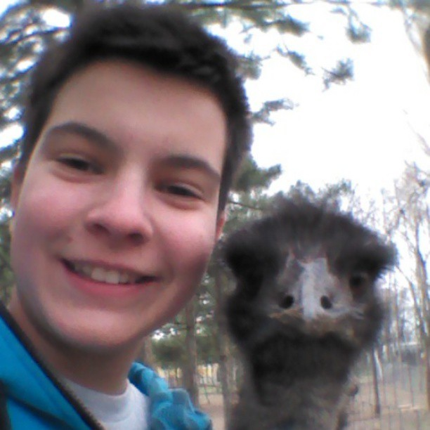 #me #emu #home #emufarm #funny #together #tree #forest #outside #animal #bird #fast #yesterday #like #funnyface #face #smile #australian