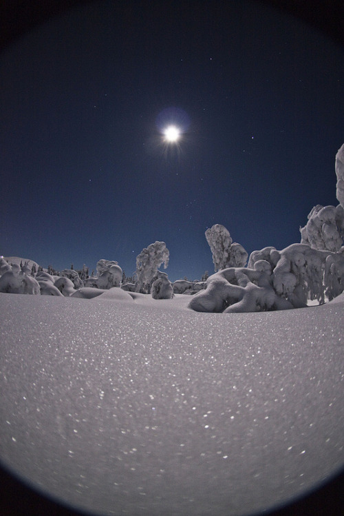 vurtual:  Trysil Night Photography Trolls - Norway (by timboocock)