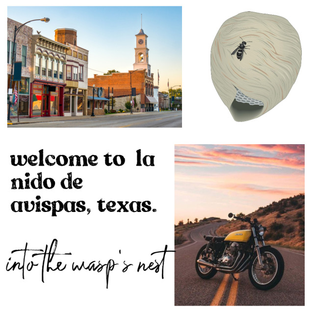 welcome to la nido de avispas, texas, known commonly as la nido to the locals  direct translation: the wasp nest, or the nest  a  border town just outside of el paso, la nido isn't known for much. the  small town vibe is undeniable, with most people within city limits  knowing one another since childhood. transplants are usually  occupation-related, with newcomers rolling in to work at the hospital,  the police station or the school, but many find that once they settle in  la nido, they're happy to stay  the devil's jesters motorcycle  club is synonymous with la nido, as they have been around since 1956.  since their formation, the jesters have worked hard to keep la nido safe  from outside interference from the esperanza cartel, located in el  paso. the president of the jesters worked hard to maintain the peace  between the mc and the cartel, and this was largely in part due to the  fact that the jesters moved their product.  in 2018, la nido was  put on the map for the first time: the president and vice president of  the devil's jesters were both killed in a distribution gone bad within  city limits, involving several police officers and taking down the  deputy sheriff. This brought attention not only to the devil's jesters,  but to the town as a whole. the mc, deep in mourning, appointed their  road captain as the new president to try to fix the mess that was made  and left for them.  the first order of business was to cut ties  with the cartel, which raised brows from many of the elder members of  the club. the esperanza cartel was furious, and their promises to stay  out of la nido were now null and void with the mc no longer working for  them.   trouble has come to town: drugs are becoming more and  more prominent, when the jesters had worked so hard to keep drugs and  dealers out of la nido since their formation. on top of this, bodies  have been becoming uncovered by the local police department, with one  single clue tying them all together: the message 'hem