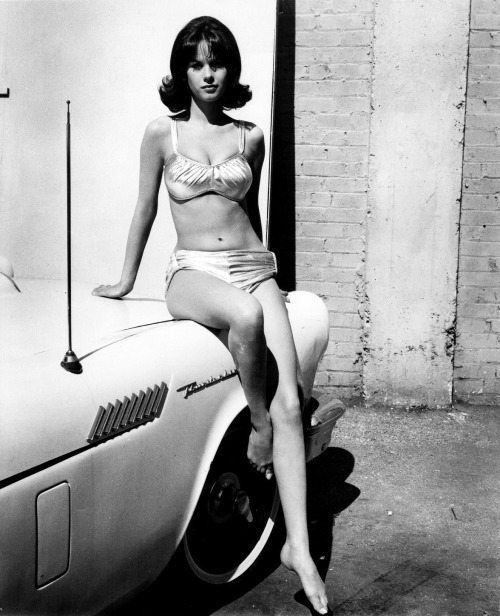 girlsandmachines:  Lana Wood