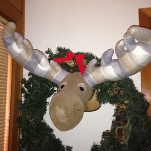 The only thing better than a mounted stuffed moose is a mounted STUFFED moose. #snowcreek #cabin #lodge #moose #plush #mounted #taxidermy #stuffedanimal #awesome (at JT's Snowboarding Party Shack)