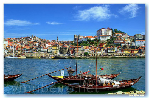 Rebelos no Douro on Flickr.VILA NOVA DE GAIA (Portugal)See where this picture was taken.. [?]