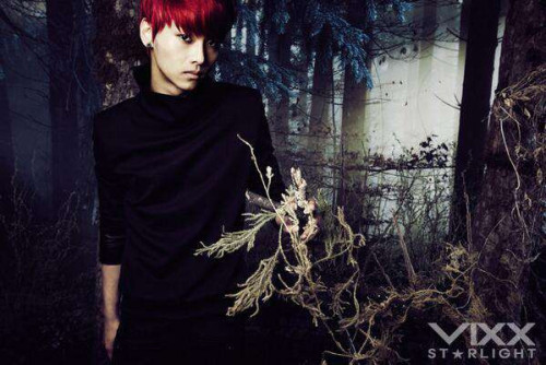 [!!] VIXX Mini Album D-1  credit: VIXX's official fancafe