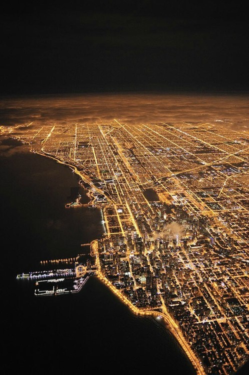 aquaticwonder:  Chicago Lights