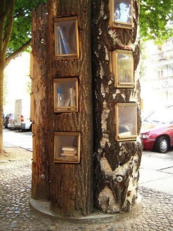 "Great idea - ""tree library"""