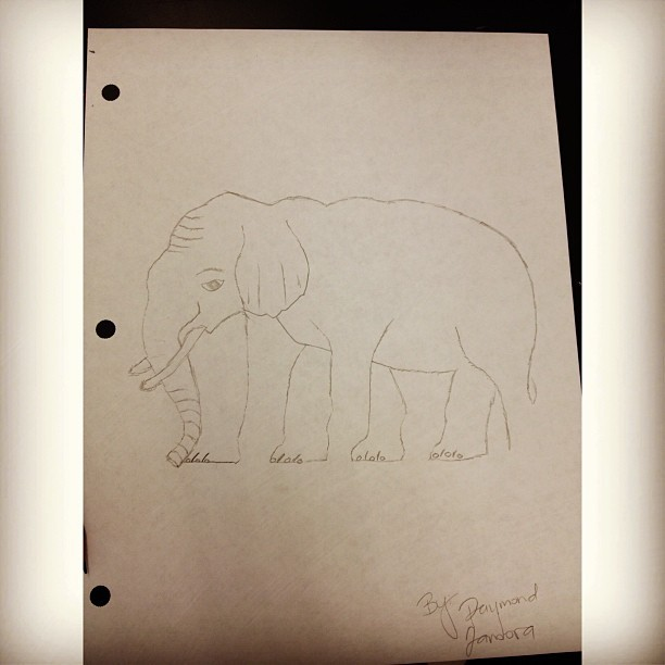 hey look! I drew elephantè! @gretchballada