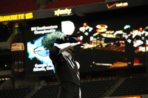 thecavaliers:  The Cavaliers are celebrating 65 years in 2013, and we can't wait to perform for the CAVALIER NATION this summer!http://www.cavaliers.org/[Photo by Michael Duebner]