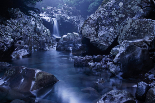 enchanted-gaia:  Donaeko in Moonlight by DMac 5D Mark II on Flickr.