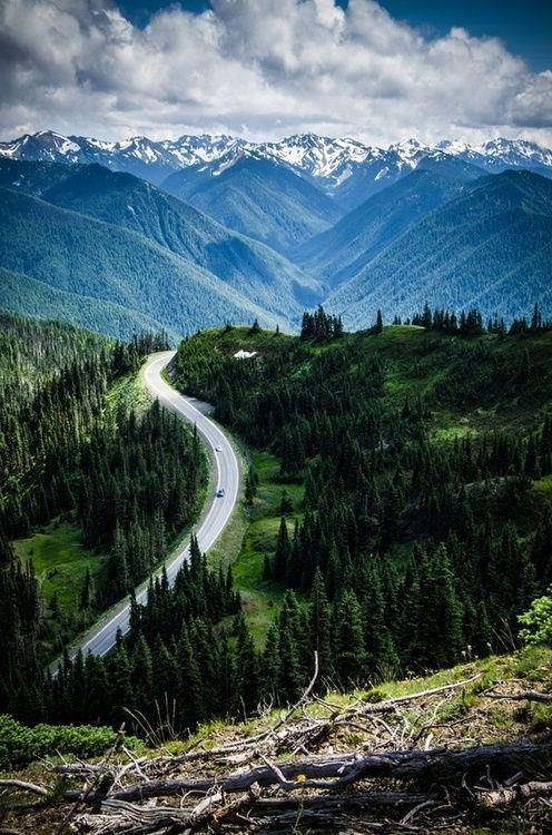 wonderous-world:  Hurricane Ridge by Douglas Johnson