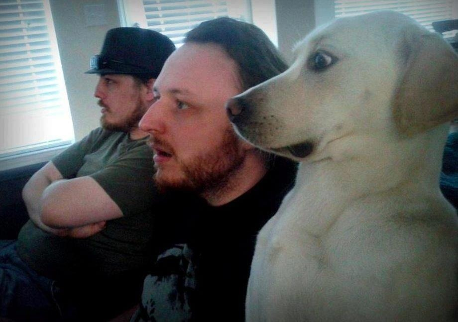 funnyordie:  Dog Watching  Lol mans best friend !