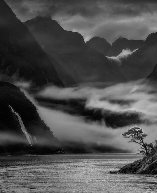 chaosophia218:  The Milford Sound, New Zealand.