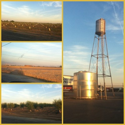 Driving trough fields at the magic hour. It's a golden time.  #instacollage #magic #countrytown #summertime #roadtrip #california #heartland (at Porterville, CA)