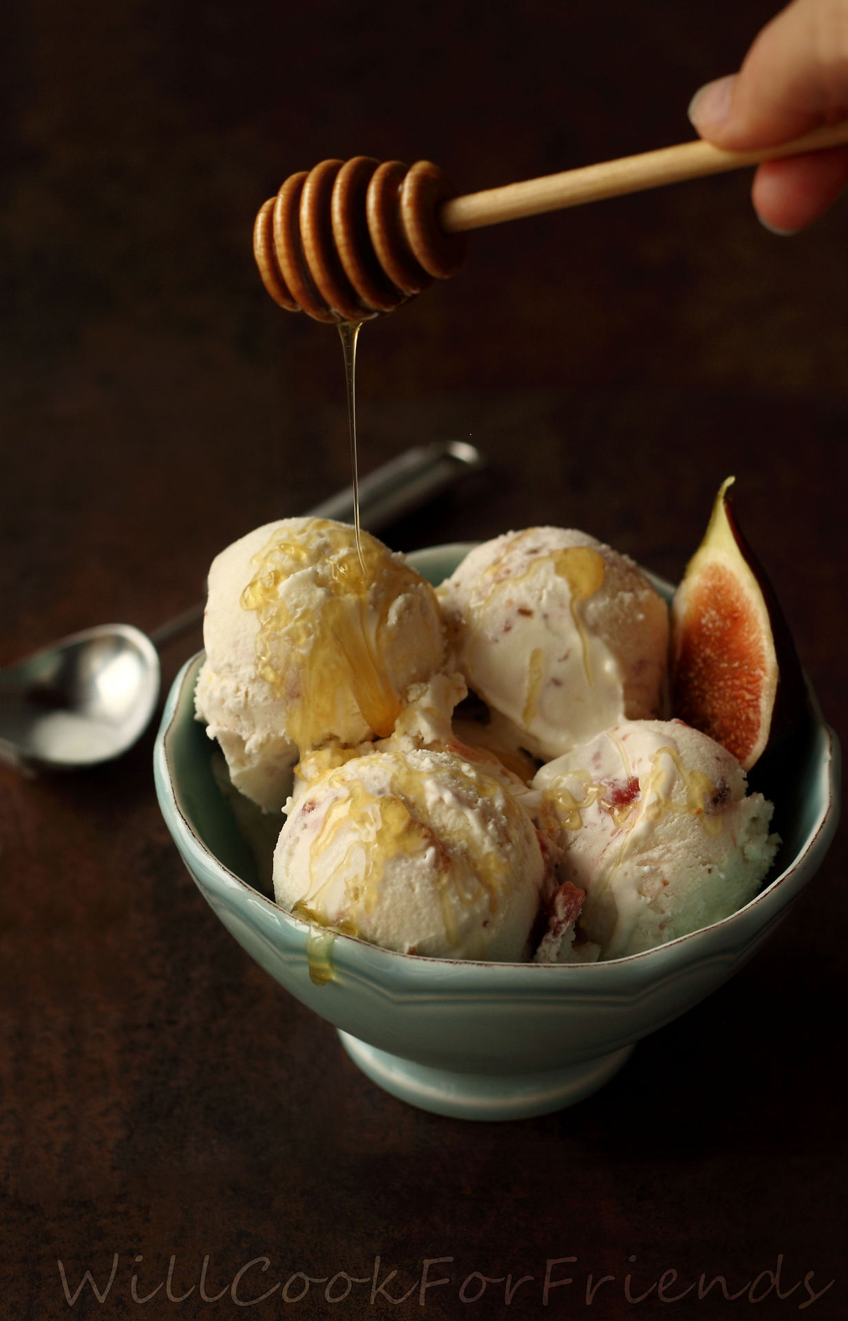 Honey'd Fig & Goat Cheese Ice Cream
