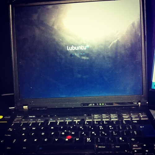 Please old laptop, come back to life for me.