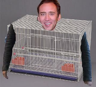 So… stupid… and yet… so… Cage.