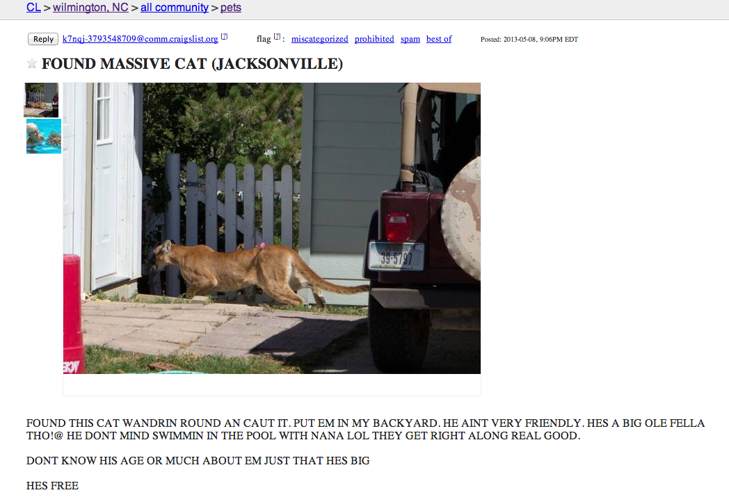 deadrevolutionaries:  LOOK AT THIS CRAIGSLIST LISTING