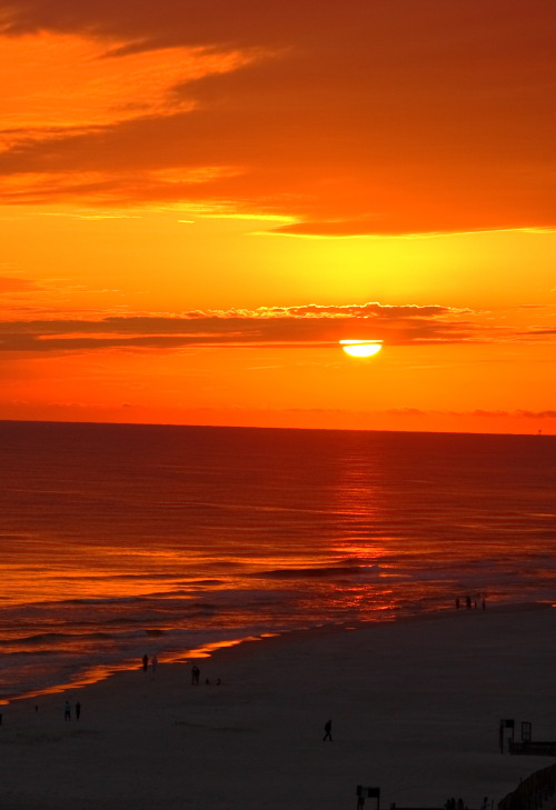 sevier:  Orange Beach, Alabama