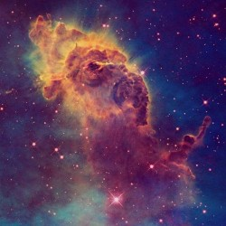 Just be because its a rainy day! Gotta love those Cosmos!!! #nebula #cosmic