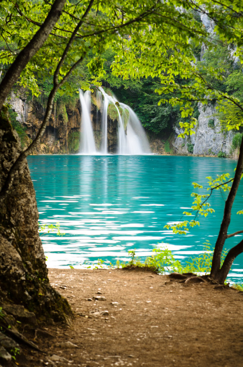 touchdisky:  Plitvice Lake, Croatia by Sergiu Bacioiu
