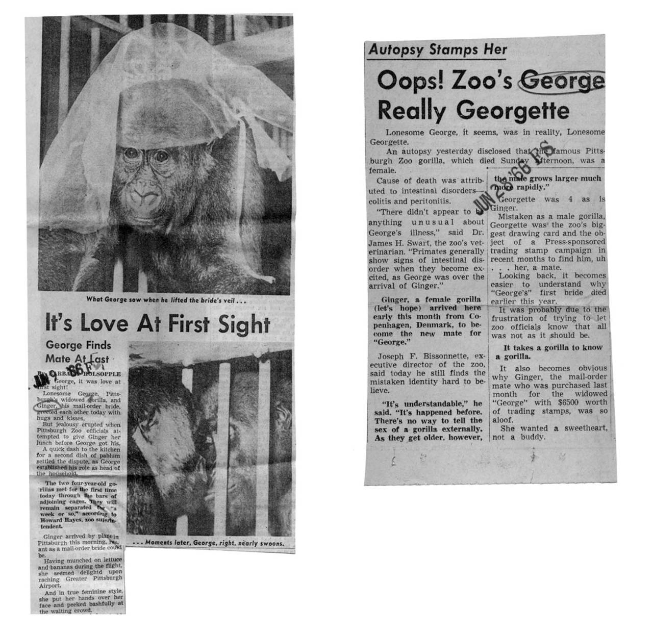 Some of the newspaper coverage of the romance.