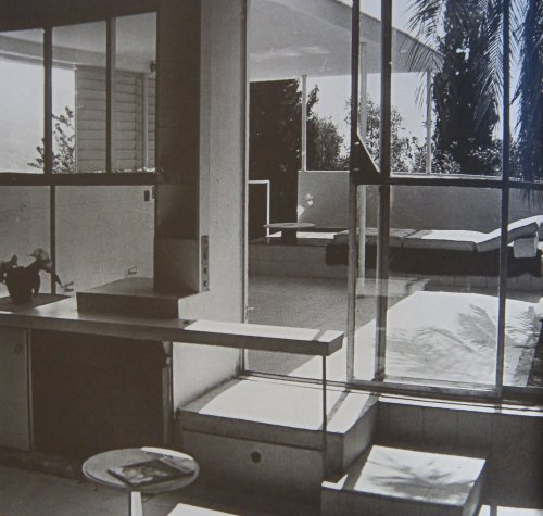 kitten-vintage: