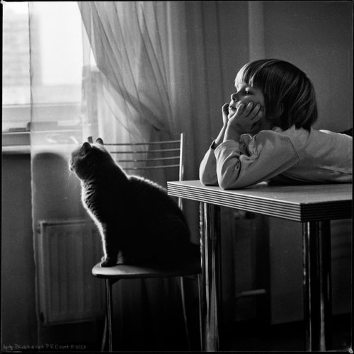 rovasd:  Little Girl and Tomcat Andy Prokh