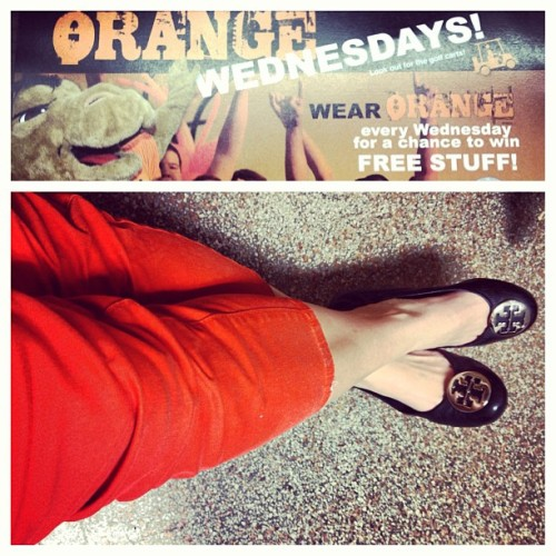 overdresstoimpress:  Orange Wednesdays! Look for me passing out free stuff for those wearing orange today courtesy of SGA! #gocamels