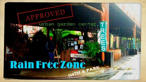 Open 9 to 7 Daily… Rain or Shine www.UrbanGardenNYC.com
