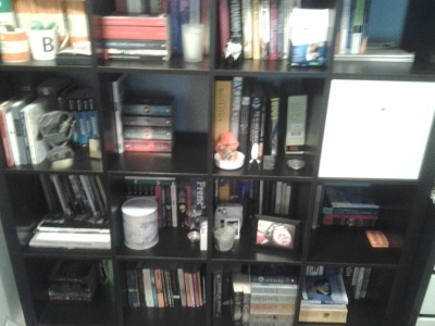 Hey guys! This is one of my three bookshelves, I just reorganised it by genre, from left to right, top to bottom the sections are; Penguin classics, regular classics, politics, English textbooks, Shakespeare, George RR Martin (yes, he is his own genre), biology, secret drawer, English prescribed reading, dictionaries, rhetoric, Russian, Virginia Andrews, regular fiction, fantasy and science fiction, and biographies.