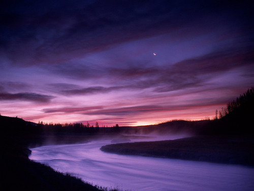 phutureprimitive:  Madison River, Yellowstone National Park, Wyoming by lehongwang on Flickr.